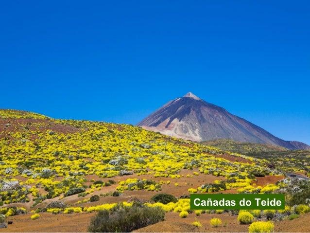 4. Caldeira de Taburiente Illa Declarado Superficie Principais ecosistemas Outras formas de protección La Palma 1954 5.956...