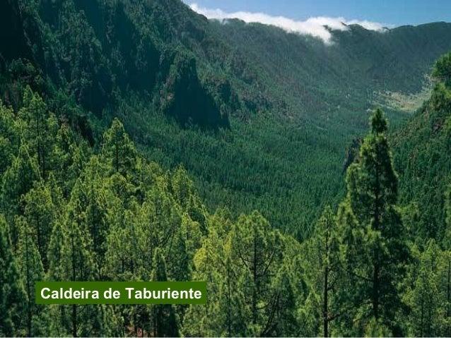 5. Aigüestortes. San Mauricio Provincia Declarado Superficie Principais ecosistemas Outras formas de protección Lleida 195...