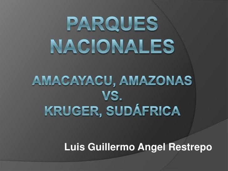 Luis Guillermo Angel Restrepo