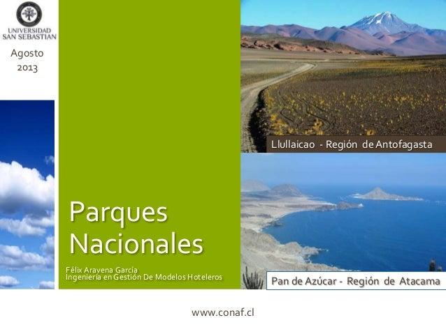 Parques Nacionales Llullaicao - Región de Antofagasta Pan de Azúcar - Región de Atacama FélixAravena García Ingeniería en ...