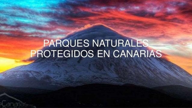 PARQUES NATURALES PROTEGIDOS EN CANARIAS