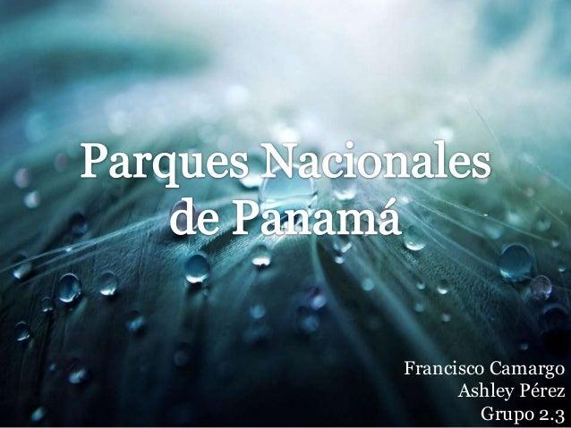 Francisco CamargoAshley PérezGrupo 2.3
