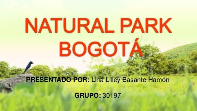 PRESENTADO POR: Lina Lilley Basante Hamón GRUPO: 30197