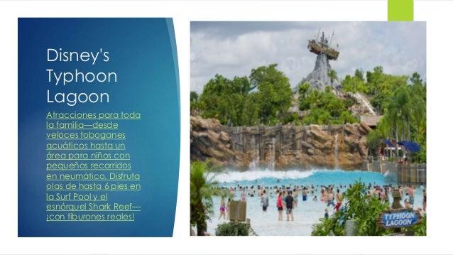 Disney's Typhoon Lagoon Atracciones para toda la familia—desde veloces toboganes acuáticos hasta un área para niños con pe...