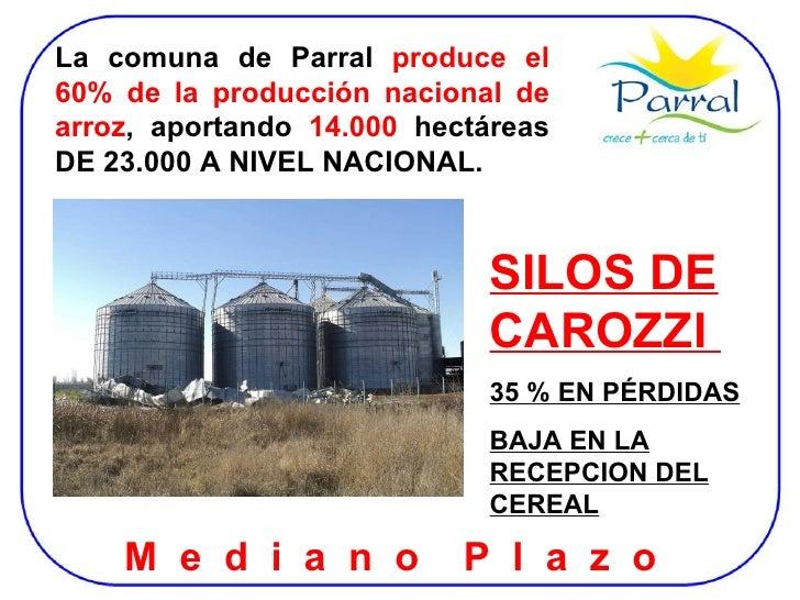 SILOS DE CAROZZI  35 % EN PÉRDIDAS BAJA EN LA RECEPCION DEL CEREAL M  e  d  i  a  n  o  P  l  a  z  o  La comuna de Parral...