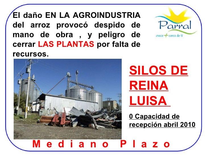 SILOS DE REINA LUISA  0 Capacidad de recepción abril 2010 M  e  d  i  a  n  o  P  l  a  z  o  El daño EN LA AGROINDUSTRIA ...