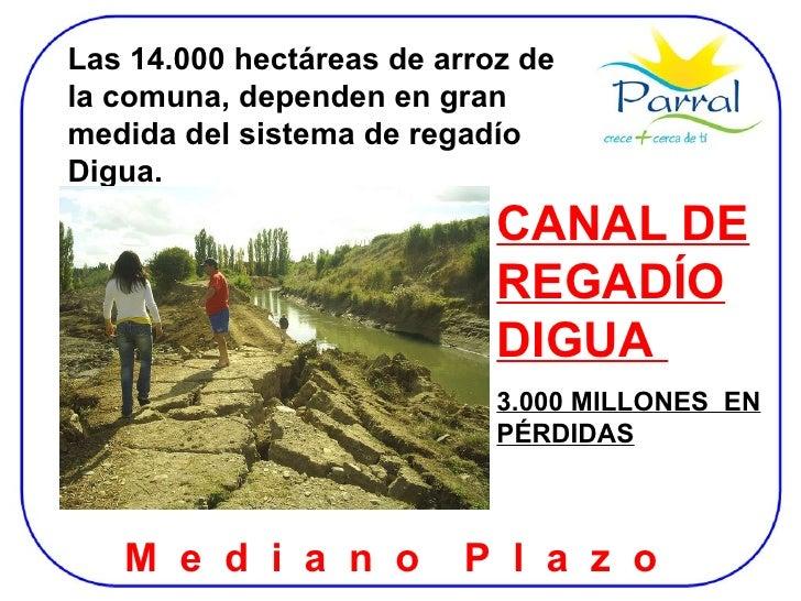 Las 14.000 hectáreas de arroz de la comuna, dependen en gran medida del sistema de regadío Digua. CANAL DE REGADÍO DIGUA  ...