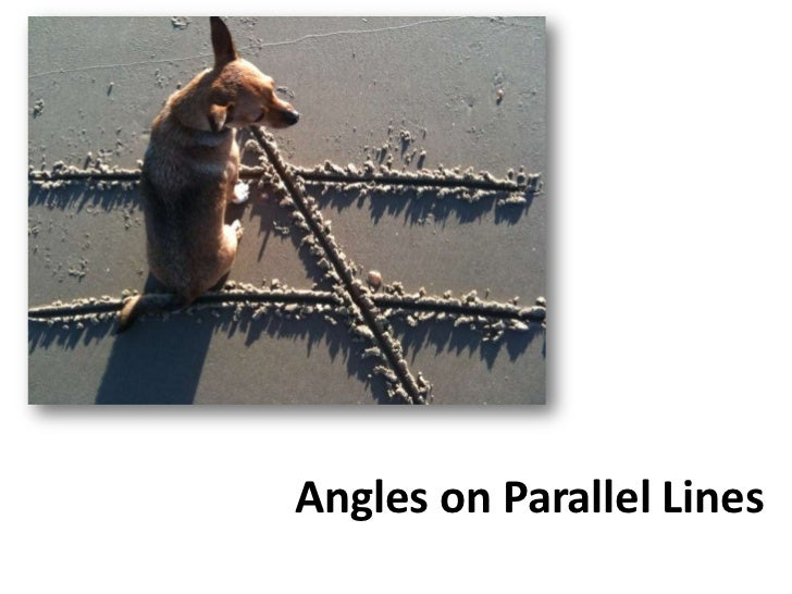 Angles on Parallel Lines<br />