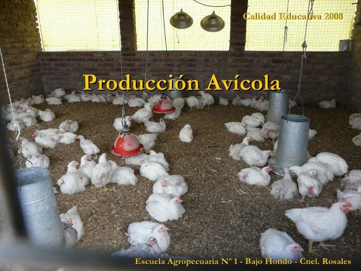 Calidad Educativa 2008 Escuela Agropecuaria Nº 1 - Bajo Hondo - Cnel. Rosales Producción Avícola