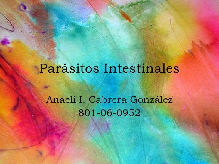 Parásitos Intestinales Anaeli I. Cabrera Gonz ález 801-06-0952