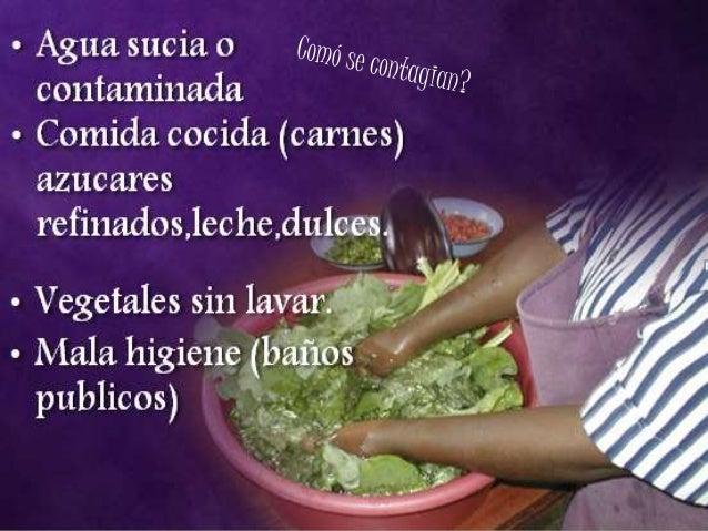 Los síntomas de los parásitos a los pequeños niños