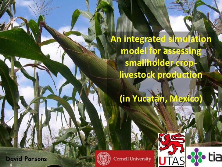 An integrated simulation                                             model for assessing                                  ...