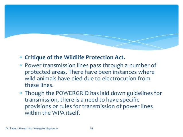 guidelines for laying transmission lines through forest areas