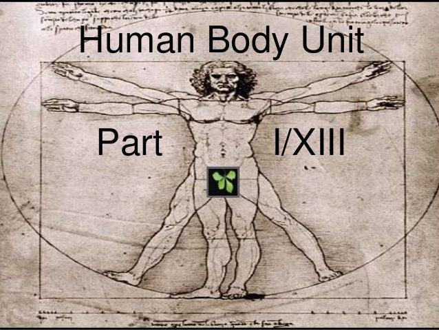 Biological Organization Human Body Unit Lesson Cells Tissues Orga