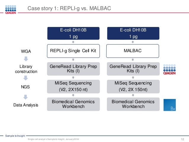 Analysis Of Single Cell Sequencing Data By Clc Ingenuity