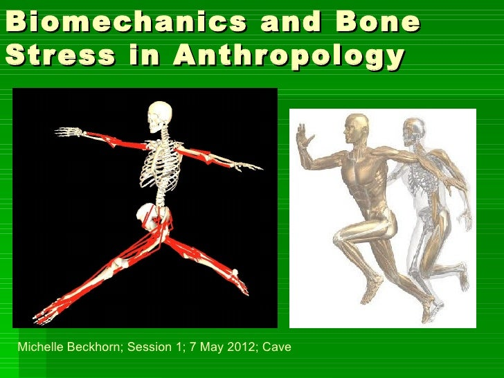 Biomechanics and BoneStress in Anthr opolog yMichelle Beckhorn; Session 1; 7 May 2012; Cave