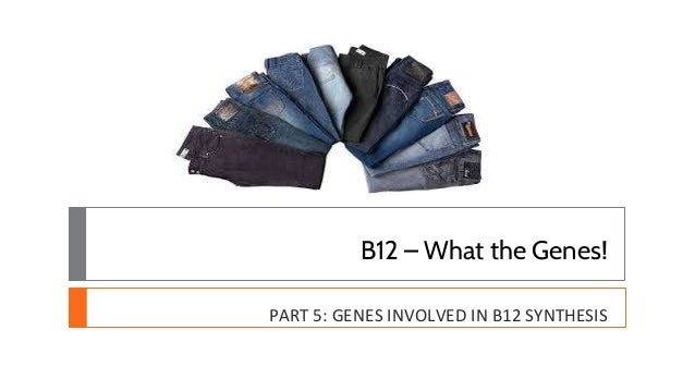 B12 – What the Genes! PART 5: GENES INVOLVED IN B12 SYNTHESIS