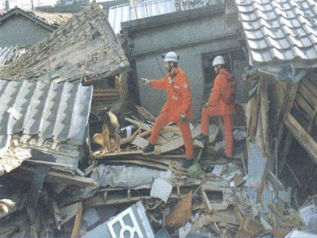 THE FIVE PILLARS OF DISASTER RESILIENCE Part 5: Recovery