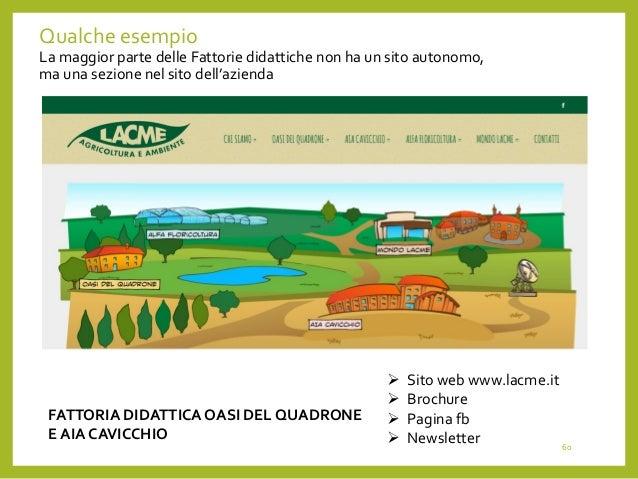 fattorie didattiche business plan