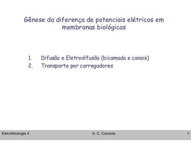 Gênese da diferença de potenciais elétricos em  membranas biológicas  1. Difusão e Eletrodifusão (bicamada e canais)  2. T...