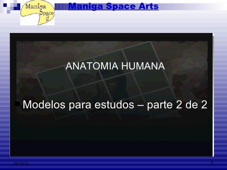 Maniga Space Arts <ul><li>Modelos para estudos – parte 2 de 2   </li></ul>ANATOMIA HUMANA