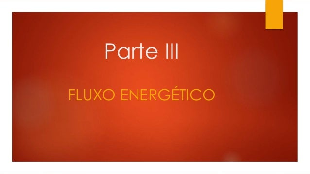 Parte III FLUXO ENERGÉTICO
