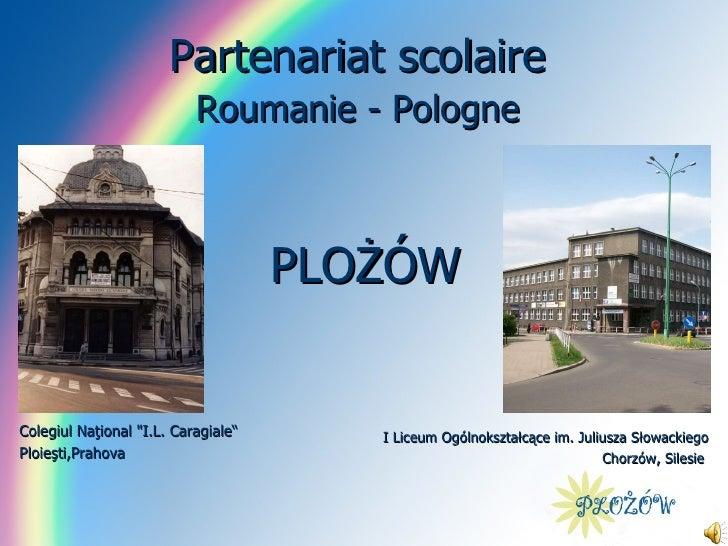 Parteneriat Polonia 2009  - Actiunea 1