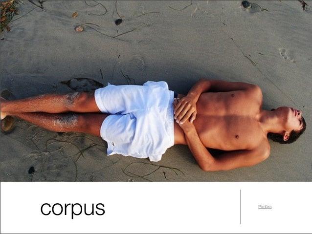 Partes corporis humani latine et graece Slide 3