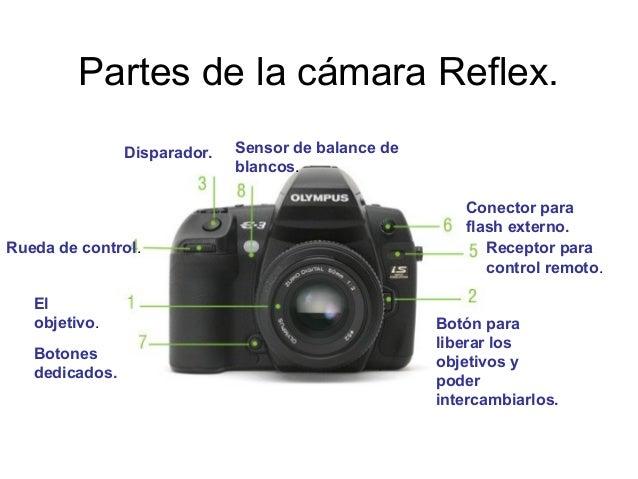 Partes de la cámara Reflex. El objetivo. Botón para liberar los objetivos y poder intercambiarlos. Disparador. Rueda de co...