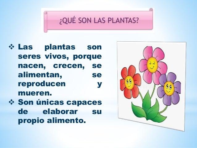  Las plantas son seres vivos, porque nacen, crecen, se alimentan, se reproducen y mueren.  Son únicas capaces de elabora...