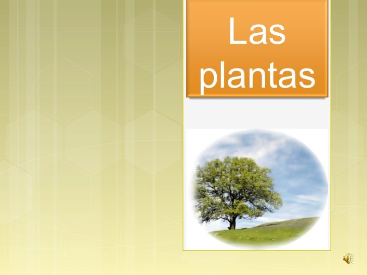 Lasplantas