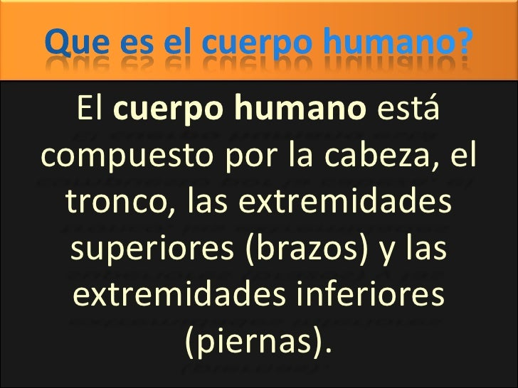 Que es el cuerpo humano?<br />El cuerpo humano está compuesto por la cabeza, el tronco, las extremidades superiores (brazo...