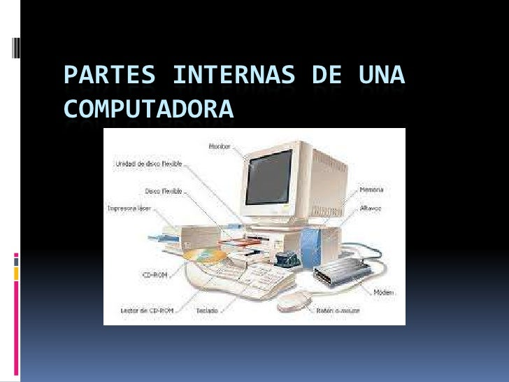 Partes internas de una computadora for Partes de un vivero forestal