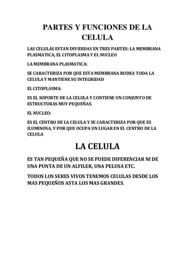 PARTES Y FUNCIONES DE LA               CELULALAS CELULAS ESTAN DIVIDIDAS EN TRES PARTES: LA MEMBRANAPLASMATICA, EL CITOPLA...