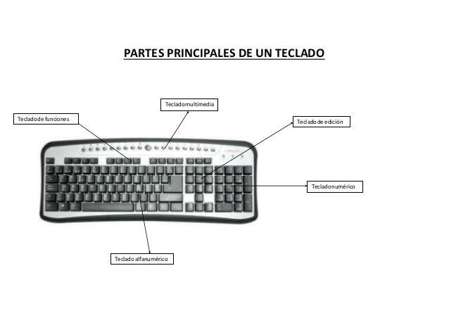 PARTES PRINCIPALES DE UN TECLADO Tecladomultimedia Tecladode edición Tecladonumérico Tecladode funciones Tecladoalfanuméri...