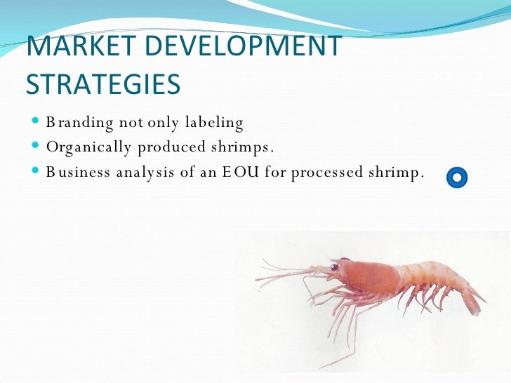 export based business strategy essay Company success and organization - export based business strategy.