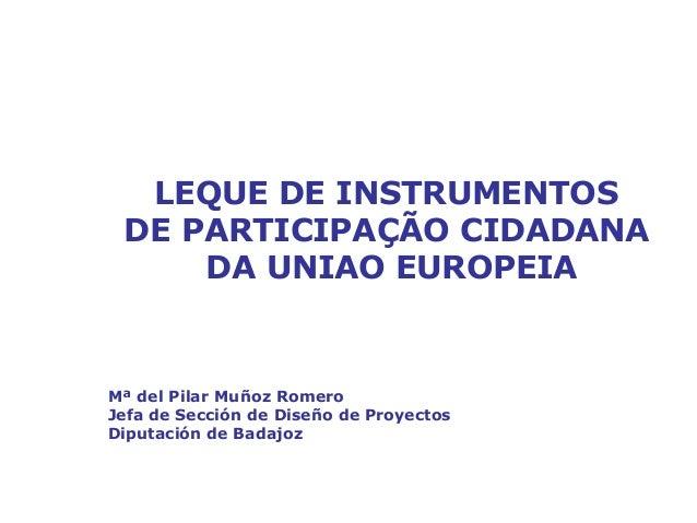 Participação dos cidadãos na definição daspolíticas da União EuropeiaLEQUE DE INSTRUMENTOSDE PARTICIPAÇÃO CIDADANADA UNIAO...