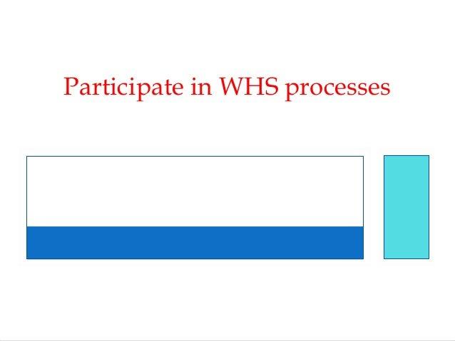 Participate in WHS processes