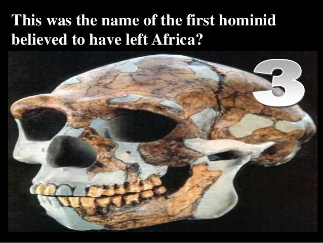 This was the name of the first hominid believed to have left Africa? Copyright © 2010 Ryan P. Murphy