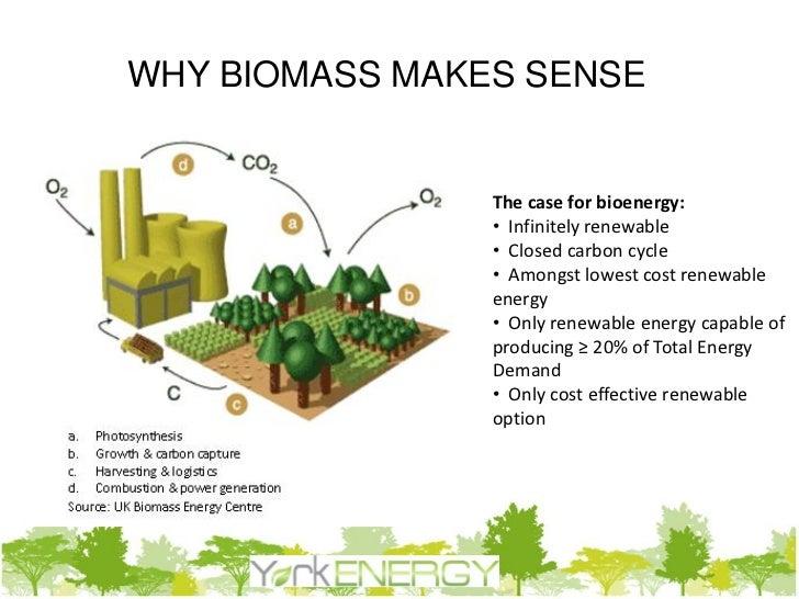 Partner In Biomass Presentation