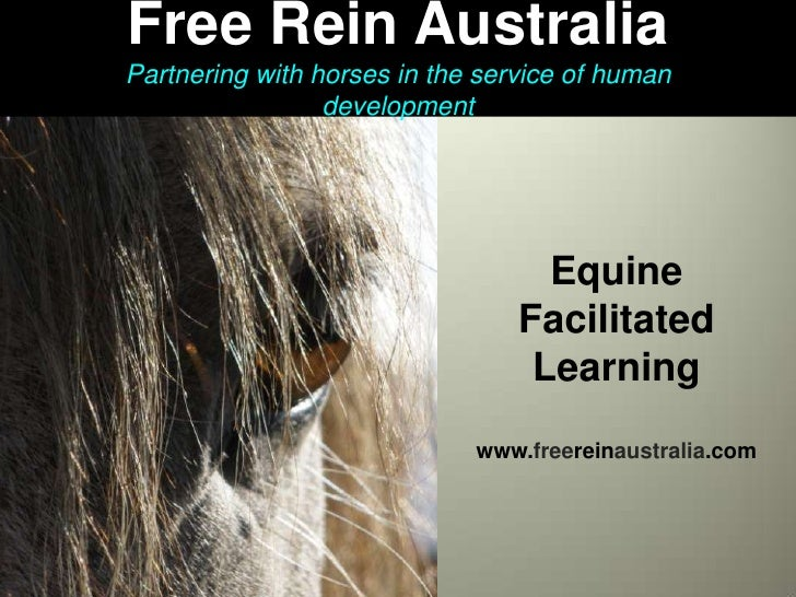 Free Rein Australia<br />Partnering with horses in the service of human development<br />Free Rein Australia<br />Free Rei...