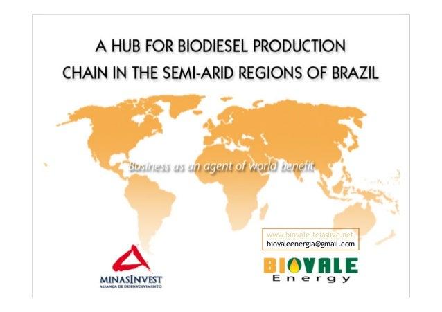 www.biovale.teiaslive.netbiovaleenergia@gmail.com