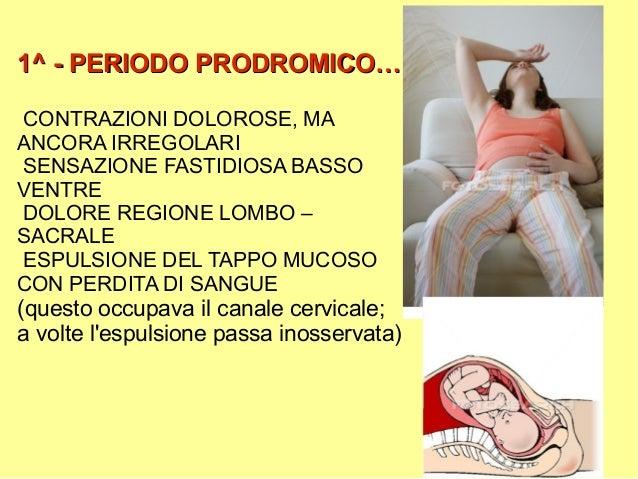 Effetto di emorroidi su una prostata