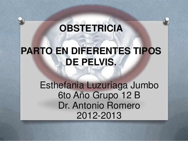OBSTETRICIAPARTO EN DIFERENTES TIPOS        DE PELVIS.   Esthefania Luzuriaga Jumbo       6to Año Grupo 12 B       Dr. Ant...