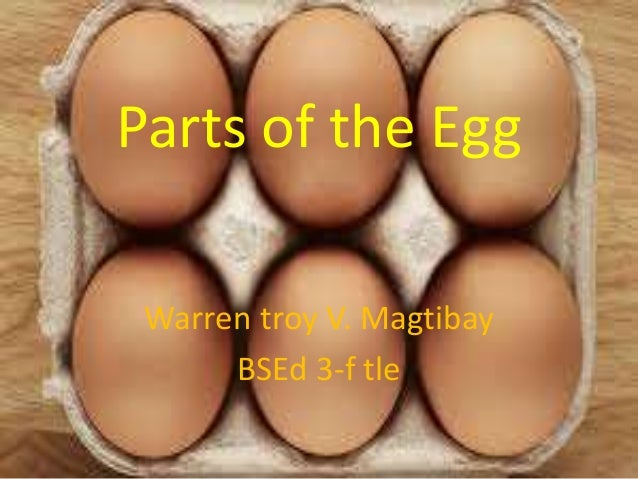 Parts of the Egg Warren troy V. Magtibay BSEd 3-f tle