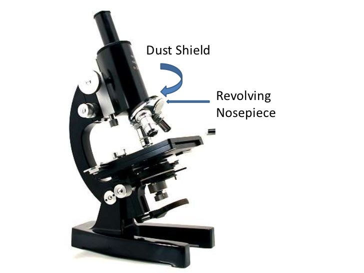 Parts And Functions Of A Compound Microscope