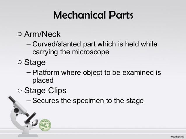 Parts and functions of a microscope