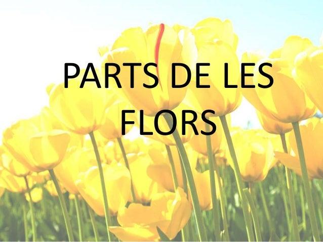 PARTS DE LES FLORS