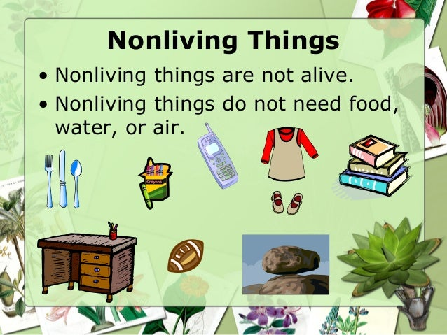 non living plants