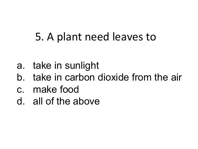 6. The flowers of a planta. take in sunlightb. make seeds for the plantc. carry the water from the roots to   the leavesd....